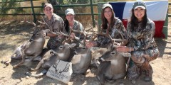 Texas Hill Country Whitetail Hunt for Women